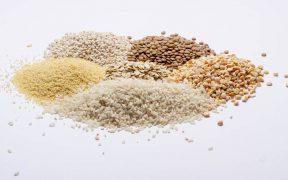 Enzymy paszowe - jaka jest ich rola